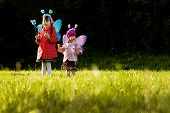 Girls with fairy wings playing on a sunny lawn poster
