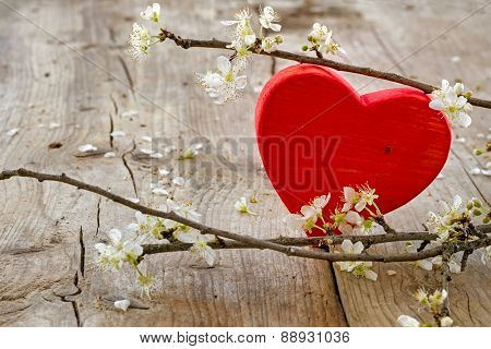 Red Heart Flower Brancheson Rustic Wooden Background, Love Symbol