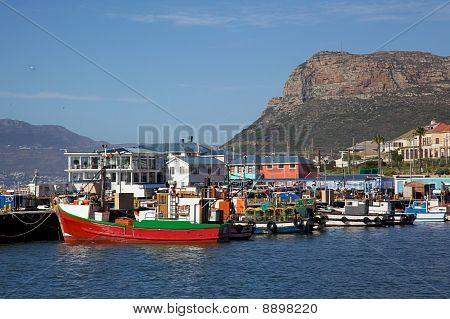 Fishing boats moored in Kalk Bay Harbour Cape Peninsula South Africa. poster