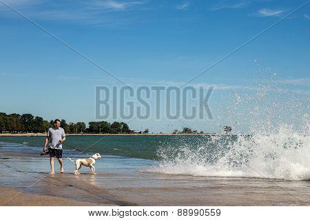 Man Walking Dog At Chicago Lakeshore