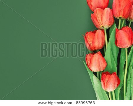 Bouquet Of Red Tulips On Green Background With Space For Message. Mother's Day And Spring Background