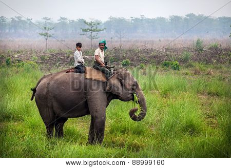 Riding Elephant In Nepal
