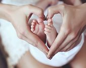 tender interior photo of cute baby feets in mom hands holding them in heart shape poster