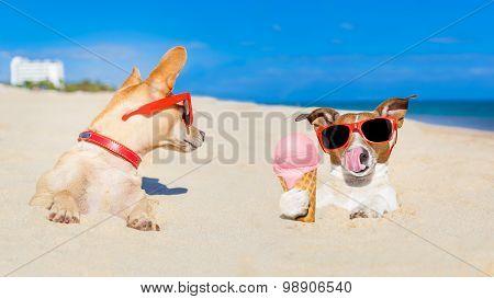 Ice Cream Dogs