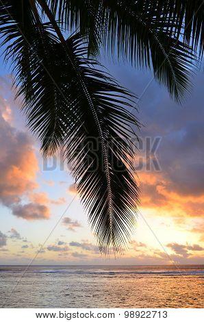 Titikaveka Beach In Rarotonga Cook Islands