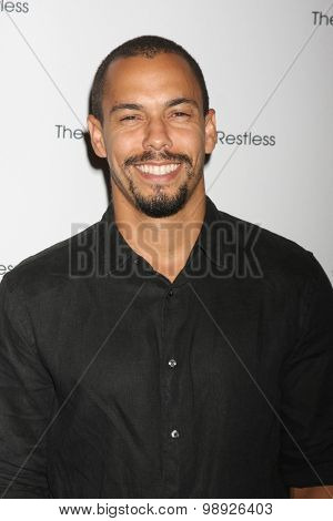 LOS ANGELES - AUG 15:  Bryton James at the