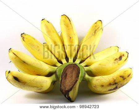 Closeup Banana