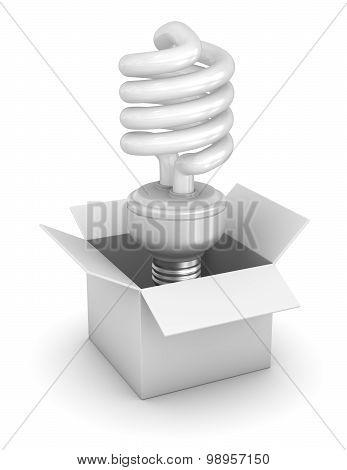 White Box And Flourescent