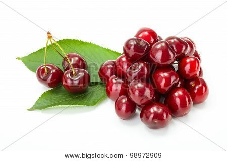 Bunch Of Sweet Cherry Berries (prunus Avium)