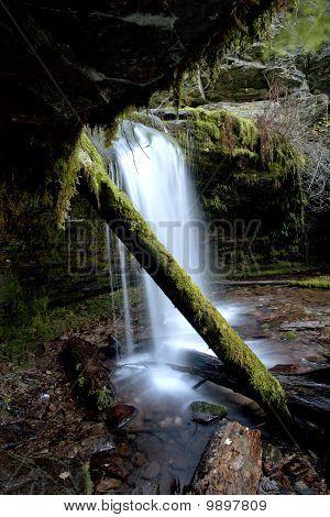 Fern Falls in Idaho.