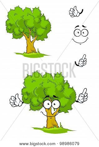 Cartoon smiling green tree character on a sunny glade with sappy grass showing attention gesture. For ecology or nature design poster