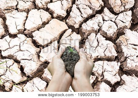 Dry cracked earth background -clay,arid area, Pathetic, Dry soil background