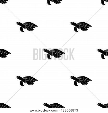 Sea turtle icon in black design isolated on white background. Sea animals symbol stock vector illustration.