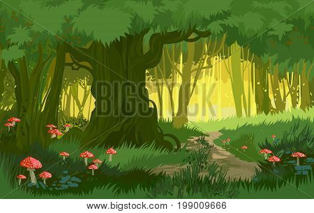 Vector illustration bright green summer forest vector background jungle with toadstool and mushrooms and forest path cartoon style