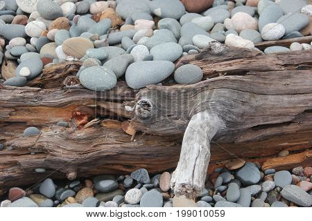 Drift wood and rocks on a beach of Lake Superior.  Pictured Rocks National Lakeshore, Upper Peninsula of Michigan