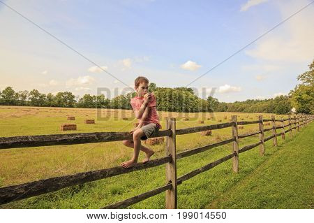 boy sitting on a wooden fence. Child on summer farm outdoors. Chews a straw. farm scene