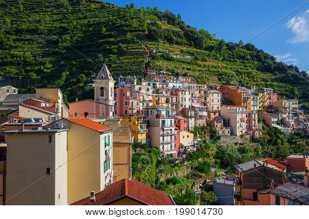 View of the colorful houses along the main street in a sunny day in Riomaggiore. Riomaggiore is one of the five famous Cinque Terre villages.