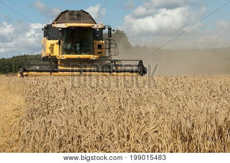 Combine harvester. Wheat harvesting shearers. Wheat is harvesting.