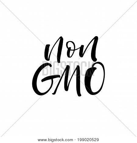 Non GMO phrase. Ink illustration. Modern brush calligraphy. Isolated on white background.