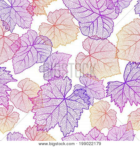 Vector seamless pattern with hand drawn grape textured leaves on white background. Autumn nature illustration. Design for wine list winery label package wrapping paper or textile print.