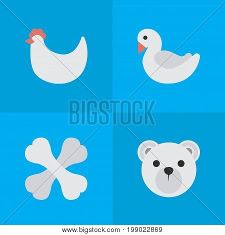 Elements Panda , Skeleton, Swan Synonyms Bones, Bear And Panda.  Vector Illustration Set Of Simple Fauna Icons.