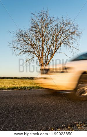 Part of the white car in motion. An asphalted rural road with a tree on the roadside in cloudless weather