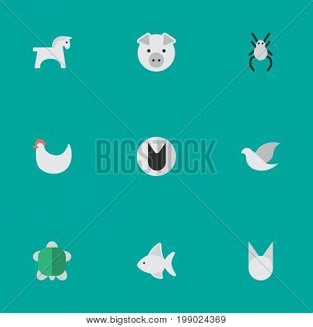 Elements Fish, Tomcat, Tortoise And Other Synonyms Dove, Hen And Seafood.  Vector Illustration Set Of Simple Fauna Icons.