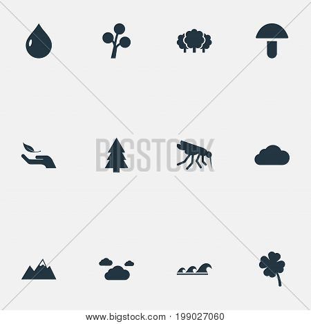 Elements Nature Protection, Pinnacle, Sea And Other Synonyms Meteorology, Plant And Gourmet.  Vector Illustration Set Of Simple Geo Icons.