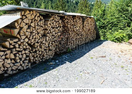 wood stack in forest nicely put together