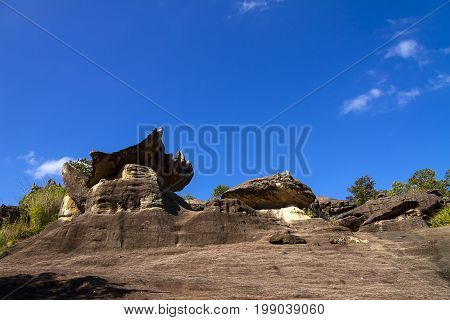 Stone forest beauty with blue sky at Phu Pha thoep National Park Mukdahan county of Thailand