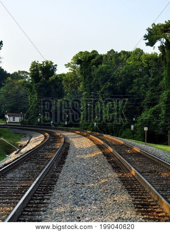 A pair of train tracks curving to the left and disappearing in the trees.