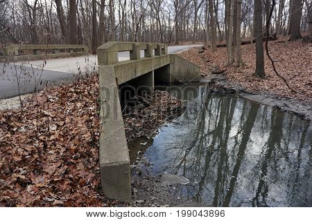 A bridge allows motorists on a paved road to cross safely over a creek in the Hammel Woods Forest Preserve in Shorewood, Illinois, during December.