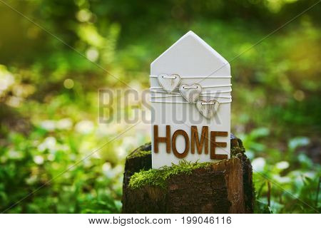Wooden house stands on a tree stump in a green forest. Peace, home, nature, eco or environmental protection concept.