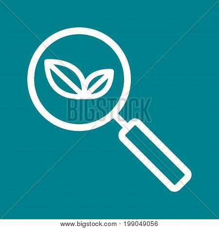 Search, organic, explore icon vector image. Can also be used for IT Services. Suitable for use on web apps, mobile apps and print media.
