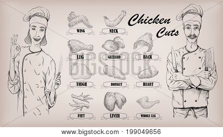 Chicken meat carcass cut parts chops info graphics scheme sign poster butchers guide neck gizzard woman and men butcher cook portrait Vector closeup horizontal beautiful black linear illustration