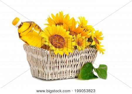 Beautiful flowers of sunflower and sunflower oil in a rustic basket on a white background. An isolated object.