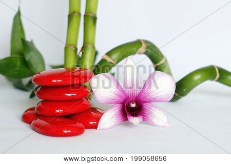 Red pebbles arranged in zen lifestyle with an orchids on the right side of bamboo twisted all on white background