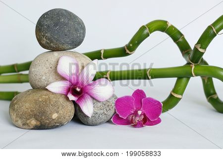 Natural gray pebbles arranged in Zen lifestyle with a two-tone orchid, on the right side of the twisted bamboos and a lighted candle on a white background