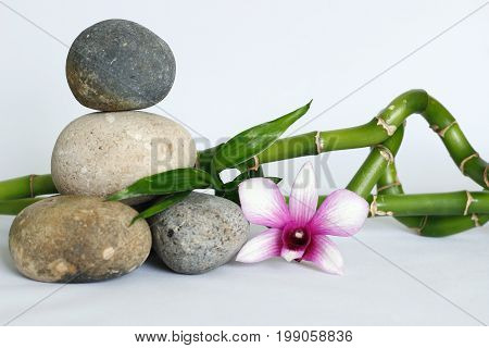 Pebbles gray natural arranged in lifestyle zen with a two-tone orchid and a dark pink orchid bamboo twisted on white background