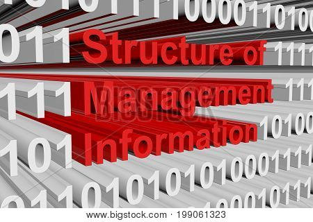 Structure of Management Information in the form of binary code, 3D illustration