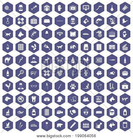 100 veterinary icons set in purple hexagon isolated vector illustration
