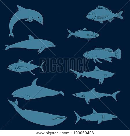fish icons set. Outline illustration tune, dish, seabream Harlequin Fish, whale  shark