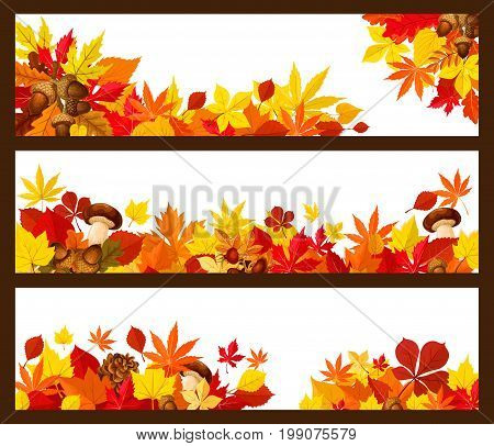 Autumn leaf border of fall season banner. Yellow maple leaves and orange foliage of forest tree, acorn branch, mushroom, briar fruit and pine cone poster with copy space for greeting card design