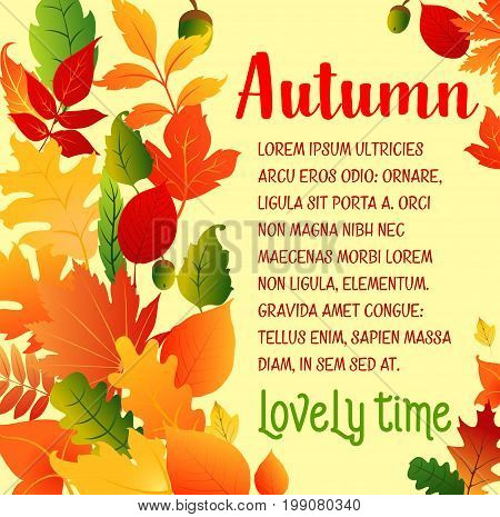 Autumn Lovely Time poster of leaf fall, oak acorns or maple foliage and aspen, rowan and elm tree falling leaves. Vector design template for autumn seasonal happy holiday greeting card