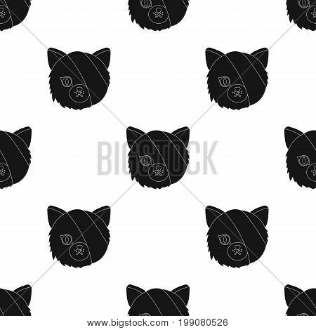 Sick cat with bandage on a head icon in black design isolated on white background. Veterinary clinic symbol stock vector illustration.