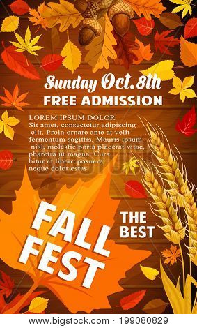 Fall harvest festival banner with autumn leaf on wooden background. Orange maple leaf, red foliage of forest tree, acorn branch and wheat ear poster with text layout for autumn fest invitation design