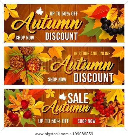Autumn sale banners of up to 50 percent discount off for September seasonal discount promo shopping. Vector design set of maple, oak and birch tree leave and forest berry harvest of rowan and dog-rose