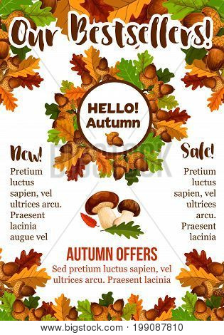 Autumn sale poster of price bestsellers and discount promo design template. Vector oak acorns, falling leaves of maple, aspen and rowan tree leaf with mushrooms and rowanberry berry harvest