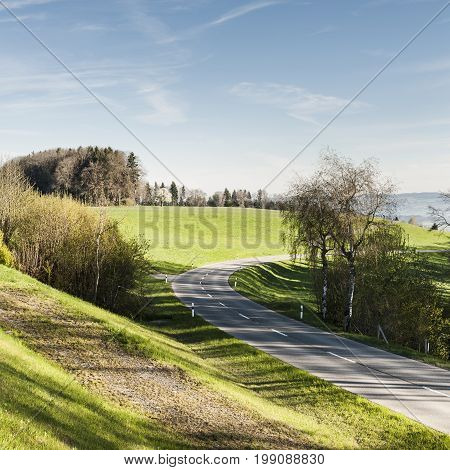 Winding asphalt road between pastures in Switzerland early morning. Swiss landscape with meadows