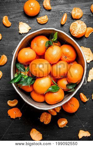 Mandarins In The Old Bucket.